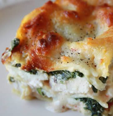 Recipe for Lasagna Alfredo - Lasagna Alfredo with chicken, ricotta and spinach. So good that my family requests it at least once a week.