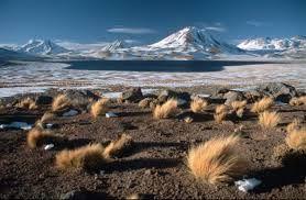 las mejores fotos de chile - Buscar con Google