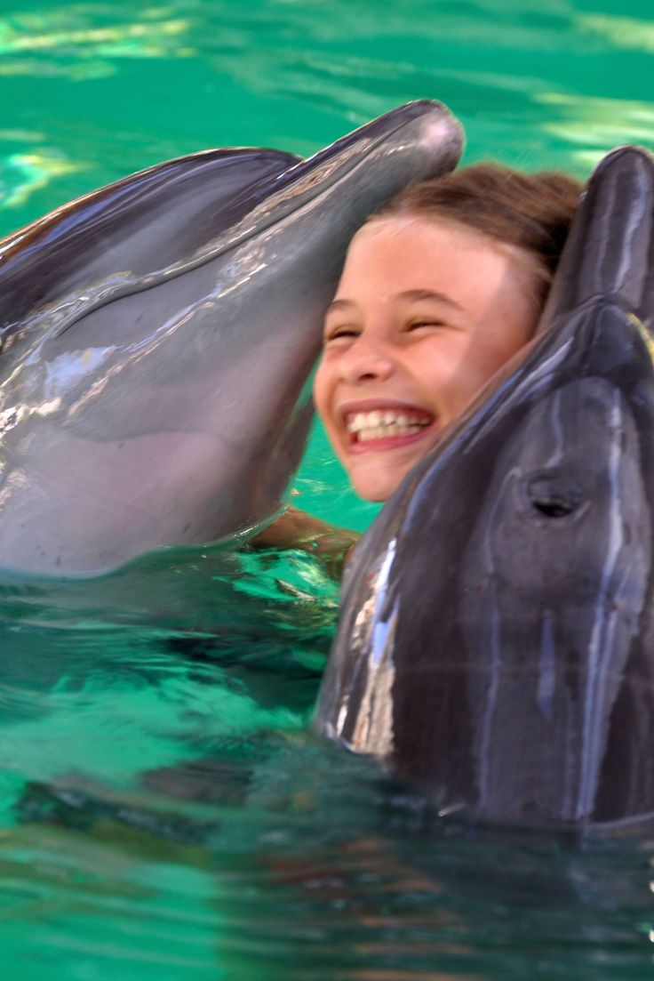 Things to do in Bali - Swim with the dolphins.  Lovina Bali is famous for its dolphins. For many children one of the highlights of a stay at Villa Bossi is the opportunity to swim with a spinner dolphin during a 30-minute interactive adventure. #bali #lovina