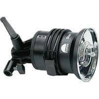 Profoto AcuteB 600 Watt/Second Lamphead