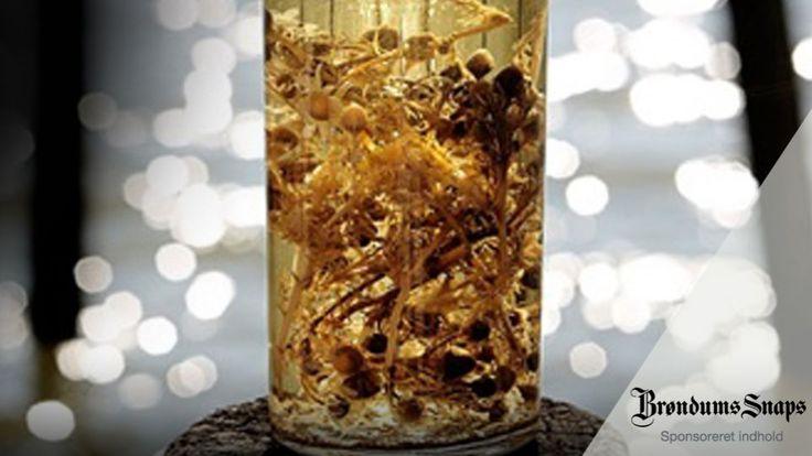 Snaps med kamille og honning er en lækker dansk opskrift af Brøndums Snaps og Rasmus Leck Fischer, se flere drikkevarer på mad.tv2.dk