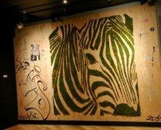 Spot the Penguin: Moss Wall Art