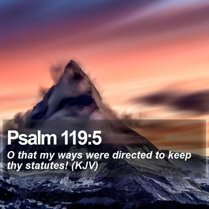 Psalm 119:5 O that my ways were directed to keep thy statutes! (KJV)  #Sun #Sky #ChristianLockScreens #WordOfLife http://www.bible-sms.com/