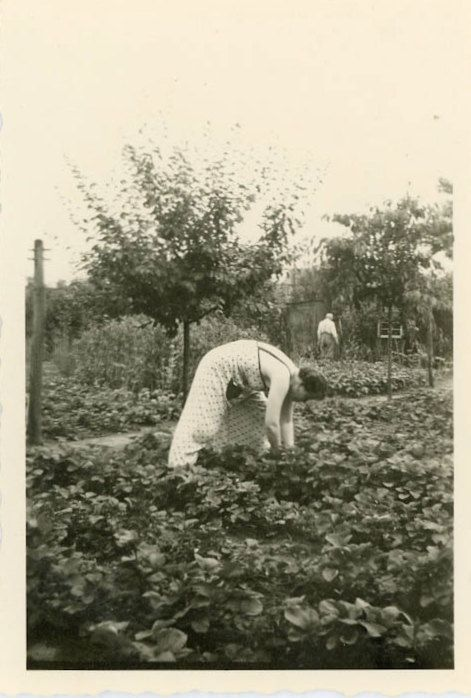Vintage Photo Working in the Garden Photography by dawnandross