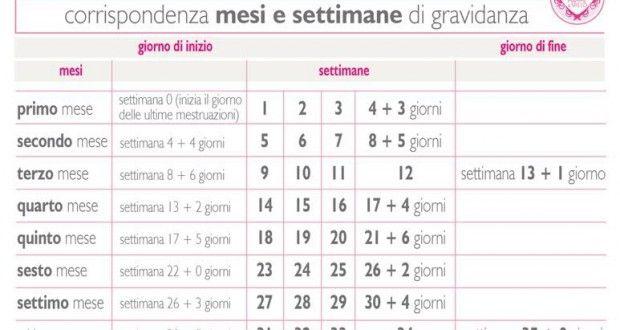 Settimane di gravidanza e mesi di gravidanza, calcolali così - Mamme a spillo