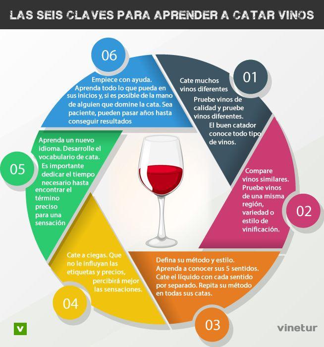 6 pautas para desarrollarse en el mundo de la cata de vinos