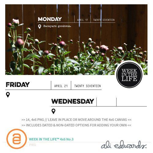 Week In The Life™ 4x6 Vol. 3  at Ali Edwards