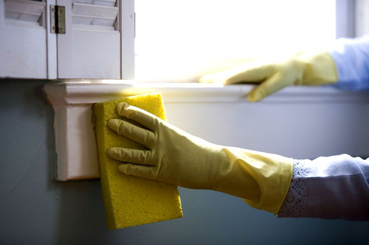 The Obsessive Compulsive Cleaners Share Their Tips
