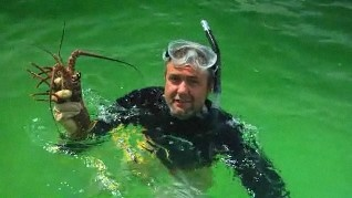 Florida lobster season is one of the Sunshine State's biggest lobster destinations in the Florida Keys. Get a lobster crash course from Mark Poetz, a longtime fishing guide in the Florida Keys. He covers the legal requirements, the diver's tools and smart fishing techniques. BPKFL.com