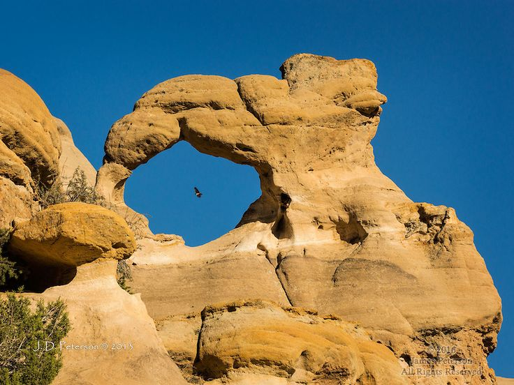 Anonymous Arch with Hawk, San Juan County, New Mexico