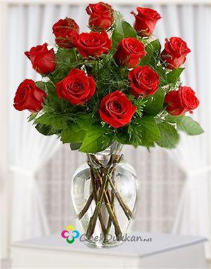 Kırmızı Gül ve Aşk
