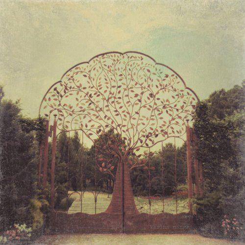wow: Doors, Trees Gates, Secret Gardens, Dreams, Garden Gates, Trees Of Life, Gardens Trees, Gardens Gates, Tree Of Life