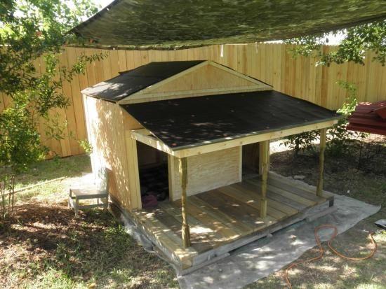 Duplex Dog house | DoItYourself.com