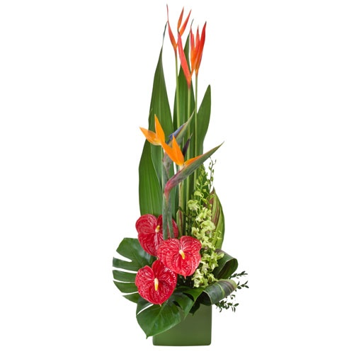 Shop Silk Bird Of Paradise And Anthurium Tropical: 1000+ Images About Tropical Floral Designs 2015 Part 2 On