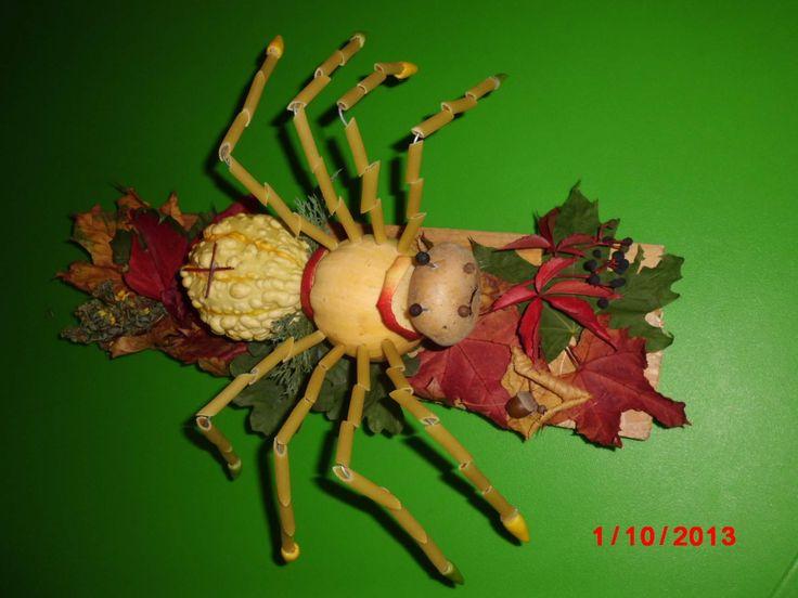 pavouk z přírodnin