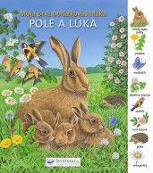 Poznávacia knižka pre deti od troch rokov o zvieratkách žijúcich v mori.