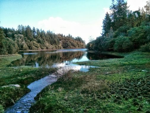 Trenchford Reservoir, Devon  Location 50.633, -3.696 Date taken 2013-11-04, 1:34 pm UTC Dimensions 2048 x 1536 Camera Nexus 4 Focal Length 4.6 mm Exposure…  -  Paul Hutchinson - Google+