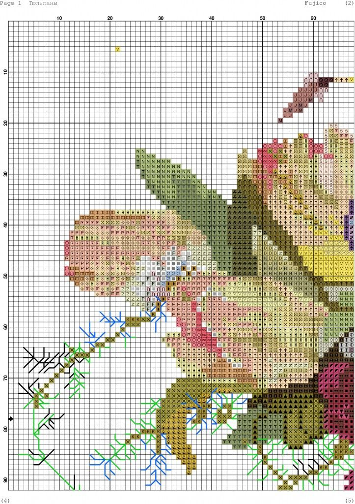 tulipani-3