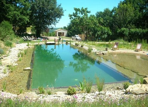 natural swimming hole