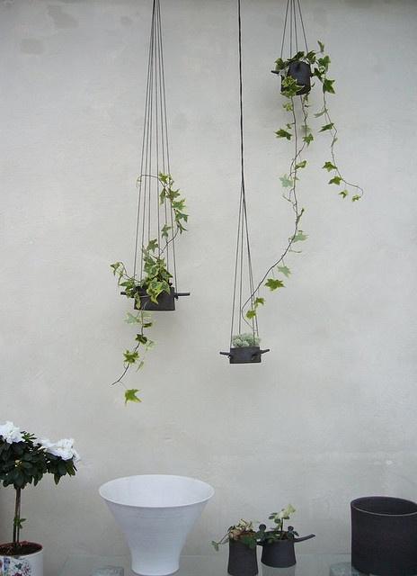 Best 25 Hanging Flower Pots Ideas On Pinterest Plant