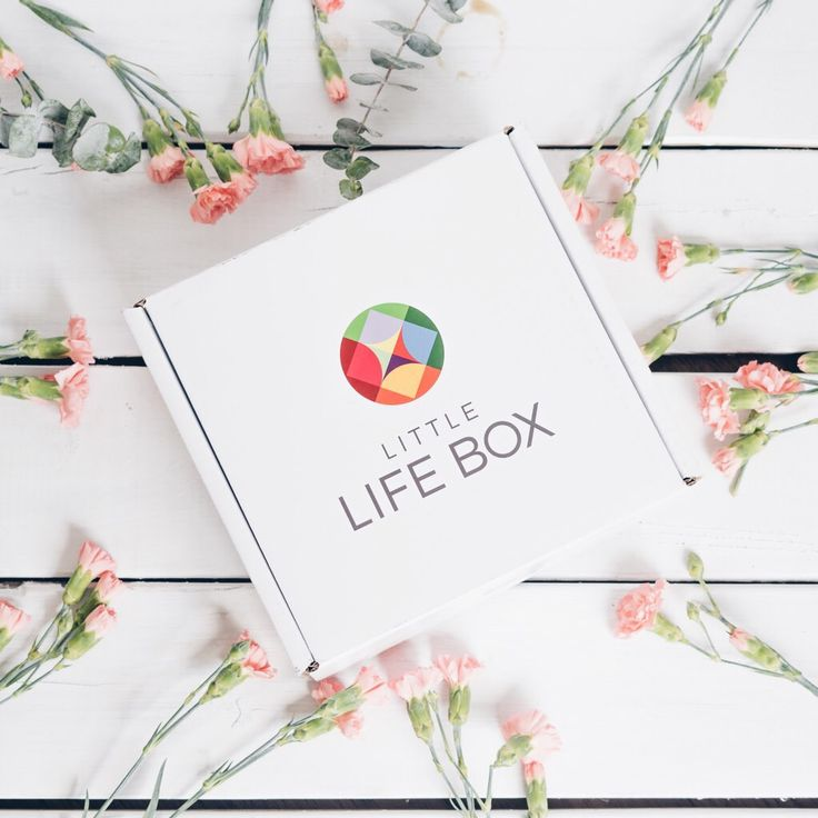 Little Life Box Mother's Day Gift Box https://www.ayearofboxes.com/subscription-box-spoilers/little-life-box-mothers-day-gift-box/