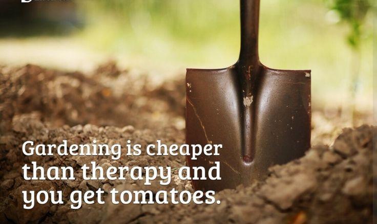 9 best Jardinage memes images on Pinterest Gardening, Gardening - que faire en cas d humidite dans une maison