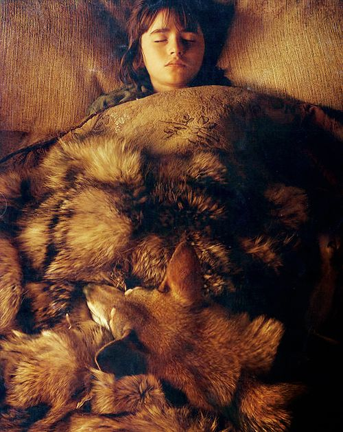 Bran and Summer- That looks just like the faux fur blanket from Pottery Barn I eventually want to own!