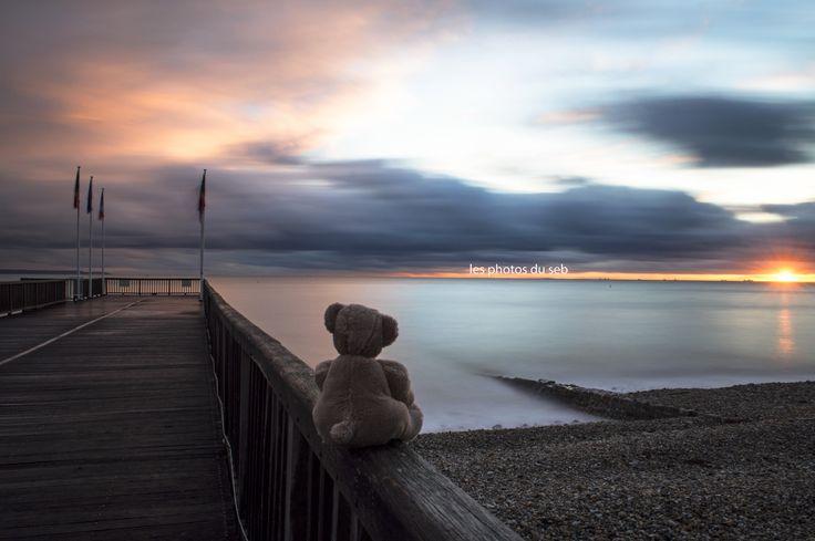 #lehavre #havre #normandie #normandy #maritime #teddy #ours #sunset #ponton #estacade #sun #blue #beach  Forever Yong by les photos du seb on 500px