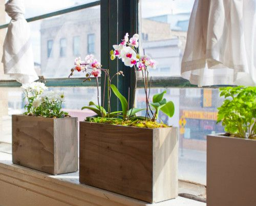 45 best orchid arrangements images on pinterest. Black Bedroom Furniture Sets. Home Design Ideas