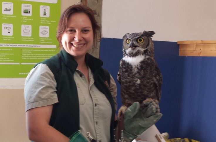 Houdini the Endangered Owl Visit - South Okanagan Raptor Centre