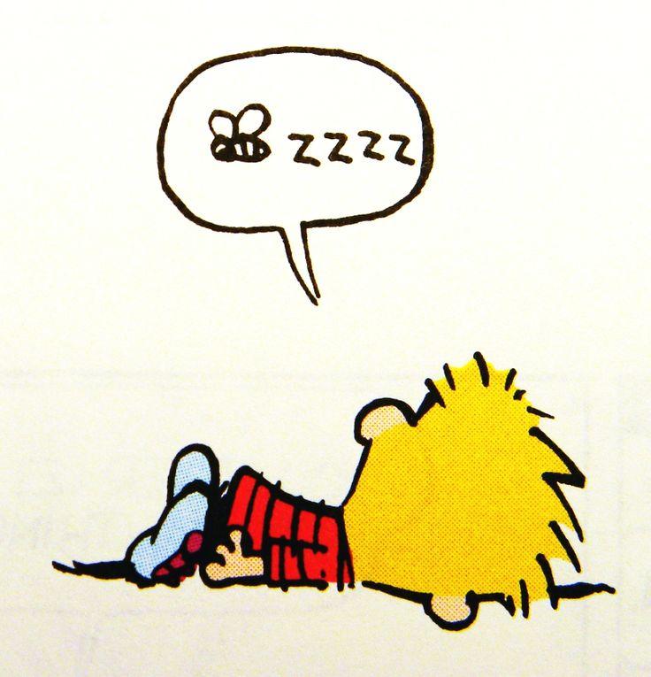 Calvin and Hobbes (DA) - zzzz