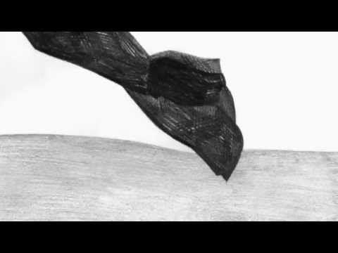 Animo Resistente (2013) by Simone Massi [trailer]