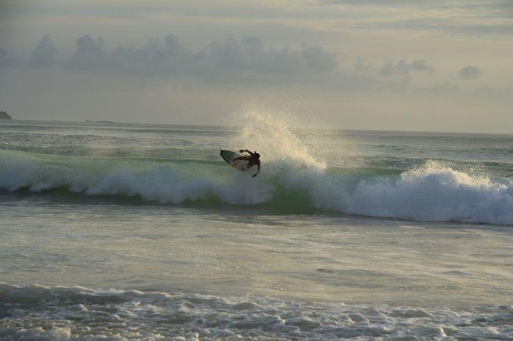 картины серфинг - Поиск в Google