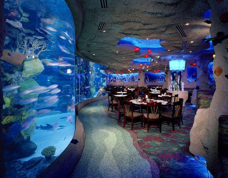Nashville Tn The Aquarium Opry Mall Nashville Tn