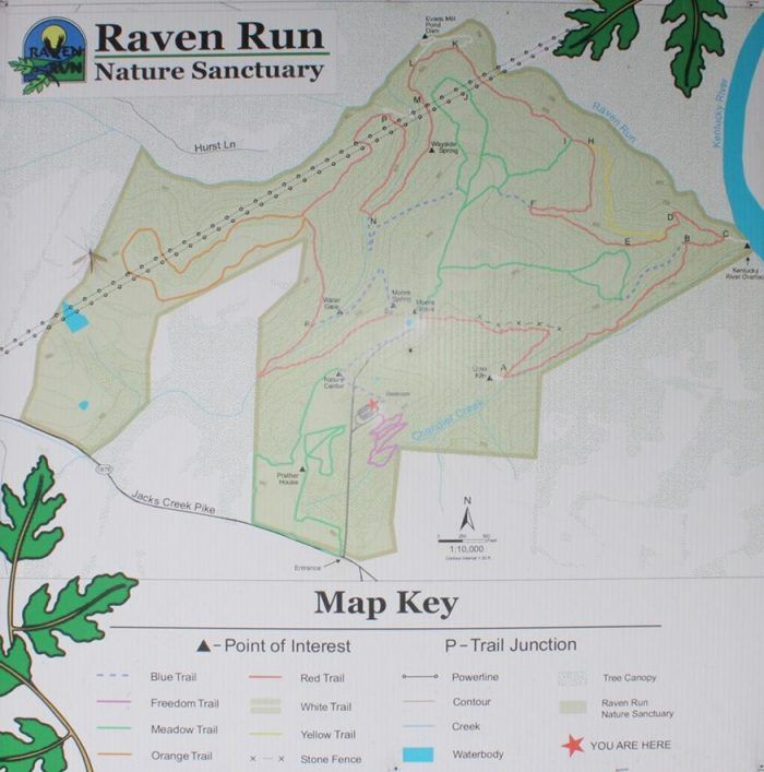 Kentucky Land Map%0A This One Easy Hike In Kentucky Will Lead You Someplace Unforgettable