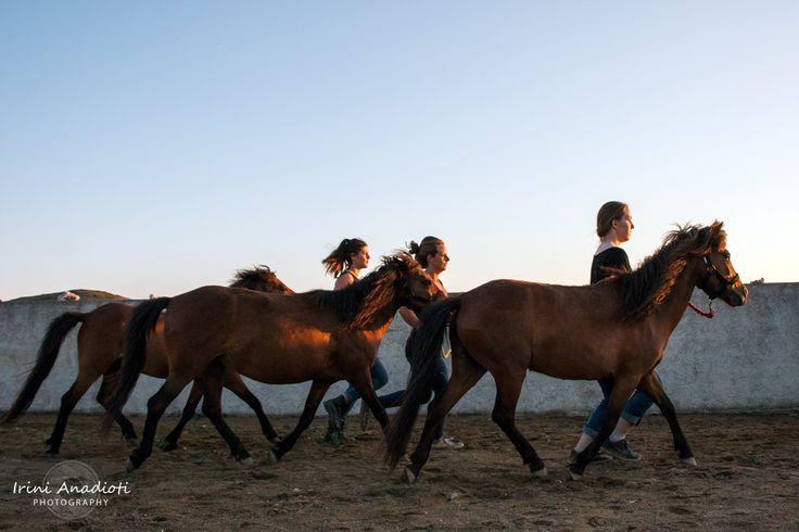 Volunteers rehearsing for festival at Skyros Island horse Trust 2015