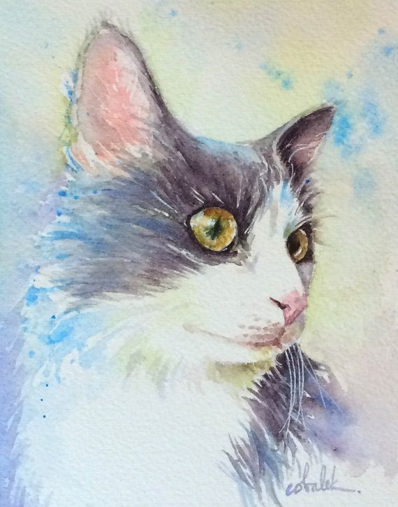 This is a print from a painting of my very own cat, Pete. He has gorgeous golden eyes, and soft long white and grey fur. He loves to play fetch