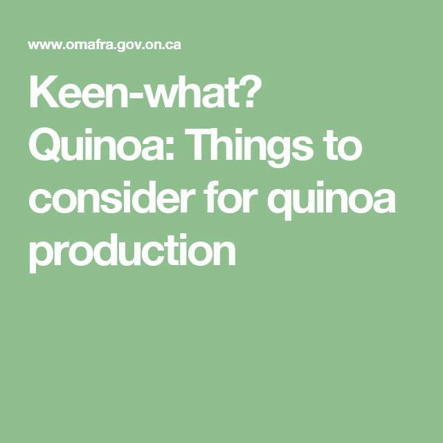 Keen-what? Quinoa: Things to consider for quinoa production