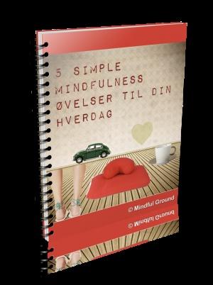 Lyt til en guidet meditation... - MBSR kursus København ❘ Mindfulness kurser ❘ Meditations retreats