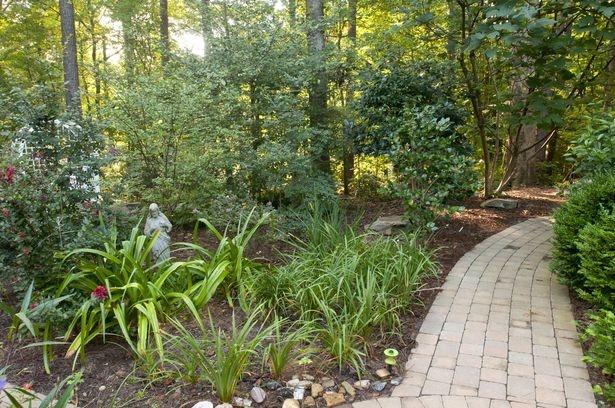 woodland backyard path