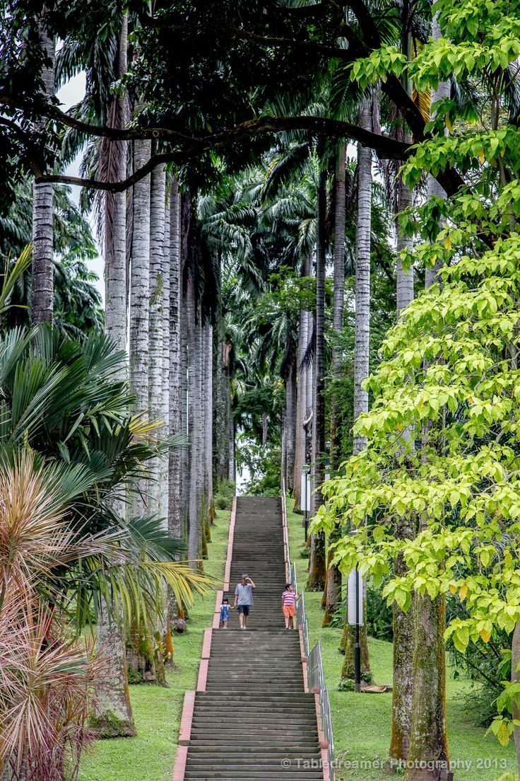Ang Mo Kio Town Gardens, Singapore
