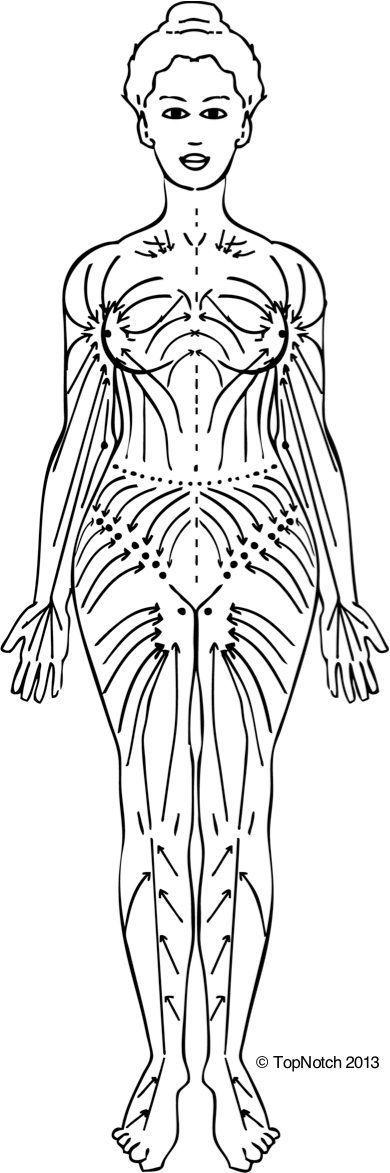 How to Dry Skin Brush : The Dry Brushing Technique || Mind Body Spirit Centre