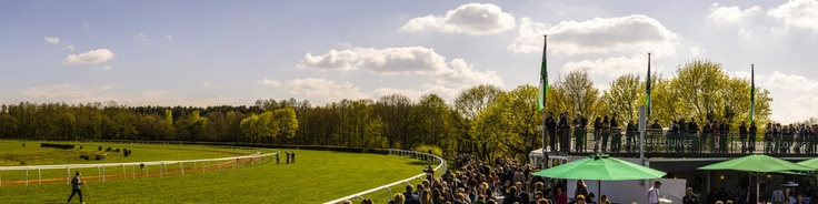 """360 degrees panorama view of the Hannover 96 horse race day at the race track Neue Bult , Langenhagen with the winner of the Rossmann cup Andre Best with PalomitaCopyright@photo-panorama-stamm.com""""Der Stamm kann 360 Grad / Stamm does 360 degrees"""""""