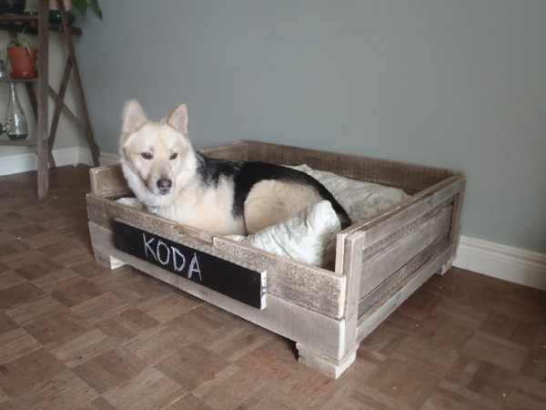 Dog bed made from pallets! @Lauren Zutt mamatrue