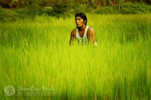 the-best-guide-lost--in-green_sumatran-trails-001