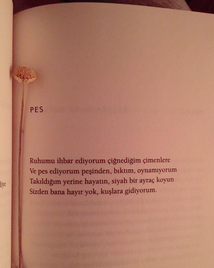 Ali Lidar pes şiir