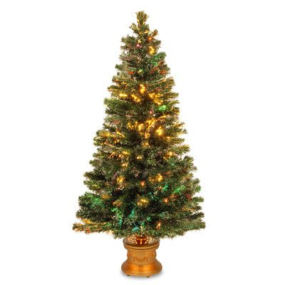 Shop Wayfair for All Christmas Trees to match every style and budget. Enjoy Free Shipping on most stuff, even big stuff.
