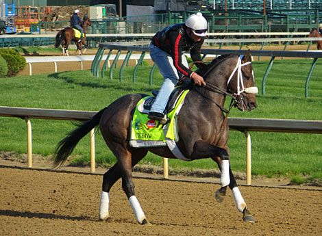 If you're looking for a high energy horse, you won't find one more high energy than the compact Oxbow, who is pretty much a coiled spring.  If any horse is due for some good luck at the draw and the start, and the entire running for that matter, it is him. You can bet Gary Stevens will be much more familiar with him this time.
