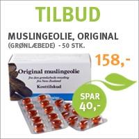 Muslingeolie, original (grønlæbede) - 50 stk.
