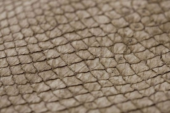 Fish leather : salmon (light finish)